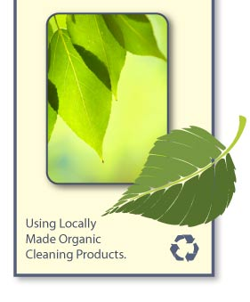 Using Locally Made Organic Cleaning Products
